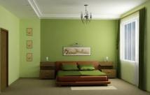 Покраска стен и потолков: правила и советы
